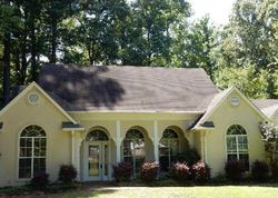 Tiffany Cir - Florence, MS Foreclosure Listings - #28796749