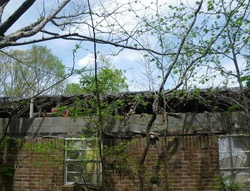 Robison Rd - Water Valley, MS Foreclosure Listings - #29346630