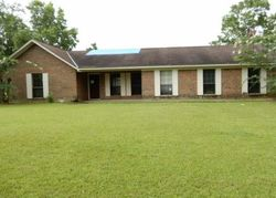 S Mt Zion Rd - Greenville, AL Foreclosure Listings - #29407562