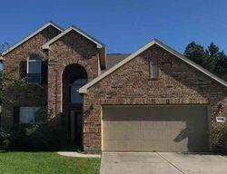 Mestina Knoll Dr - Porter, TX Foreclosure Listings - #29763615