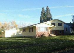 Michigan St - Hibbing, MN Foreclosure Listings - #29839347