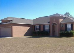 Dogfish Ct - Kissimmee, FL Foreclosure Listings - #29978021